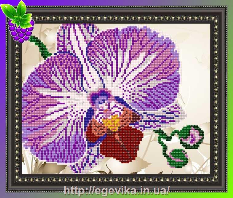 Рисунок для вышивки орхидеи 80