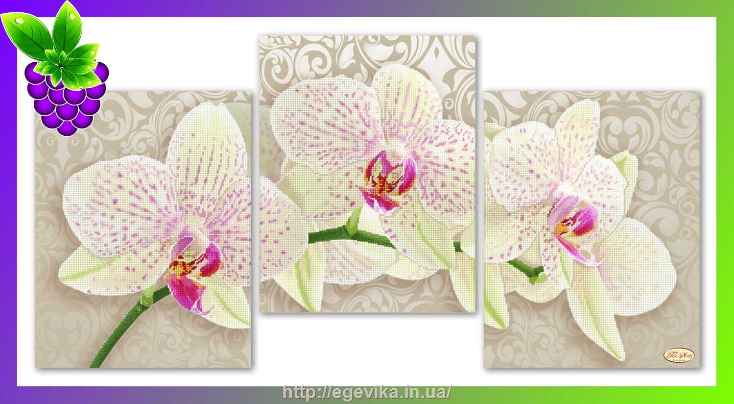 Вышивки фирма орхидея